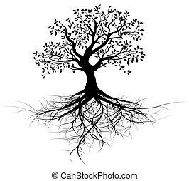 träd, vektor, hel, rötter, svart