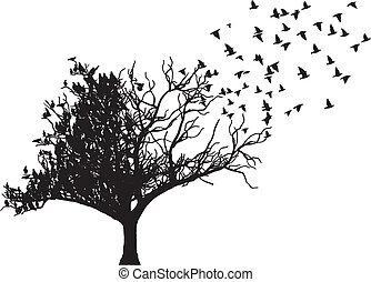 träd, vektor, konst, fågel