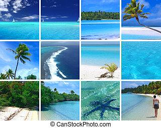 tropisk, montage