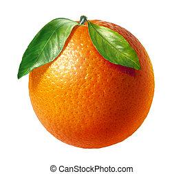 två, bladen, bakgrund., frukt, apelsin, frisk, vit