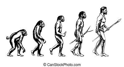 utveckling, mänsklig, illustration