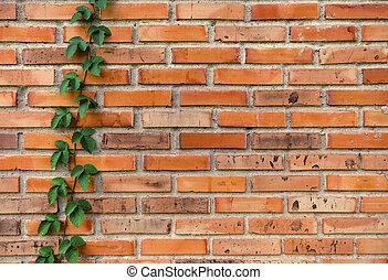 vägg, där, vin, yta, wall., bakgrund, tegelsten, längs, struktur