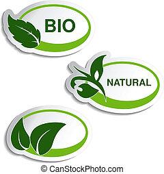 växt, naturlig, blad, -, symboler, vektor, klistermärken