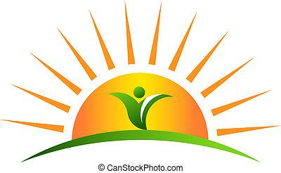 växt, soluppgång