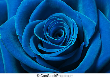 vacker, blå, ro