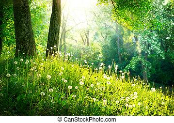 vacker, landskap., fjäder, nature., träd, grönt gräs