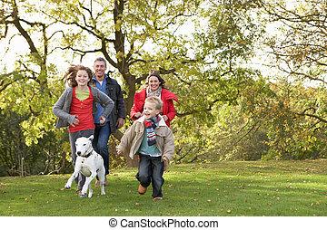vandrande, familj, parkera, ung, hund, genom, utomhus