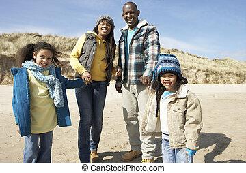 vandrande, strand, vinter, familj