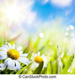 vatten, abstrakt, sky, bakgrund, konst, sommar, gräs sol, blomma, droppar