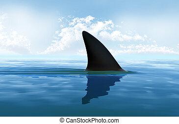 vatten, haj fena, ovanför