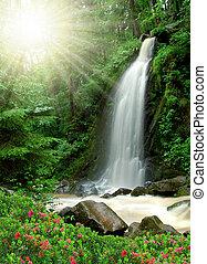vattenfall, vacker
