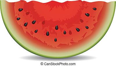 vattenmelon, vektor, skiva