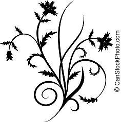 vektor, dekor, rulla, illustration, cartouche