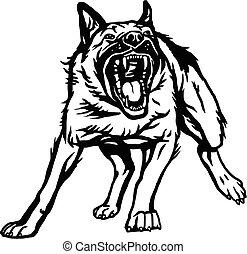 vektor, illustration, tysk, aggressiv, hund, isolerat, bakgrund, -, vit, angrepp, fåraherde