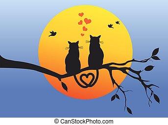 vektor, katter, filial, träd