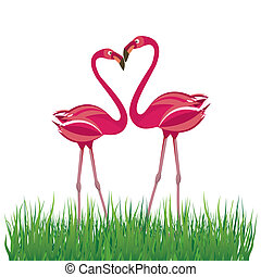 vektor, love., flamingo, två, illustration