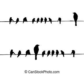 vektor, silhouettes, tråd, fåglar