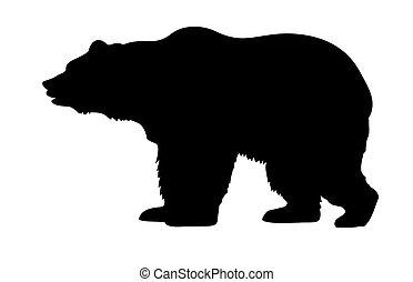 vektor, silhuett, björn