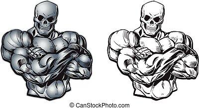 vektor, tecknad film, muskulös, kranium, torso, huvud
