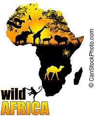 vild, affisch, afrika