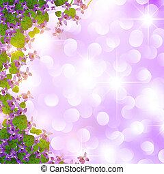vild, gräns, violett