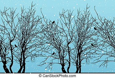 vinter, skog