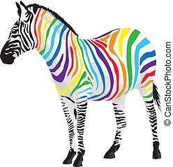 zebra., olik, remsor, colors.